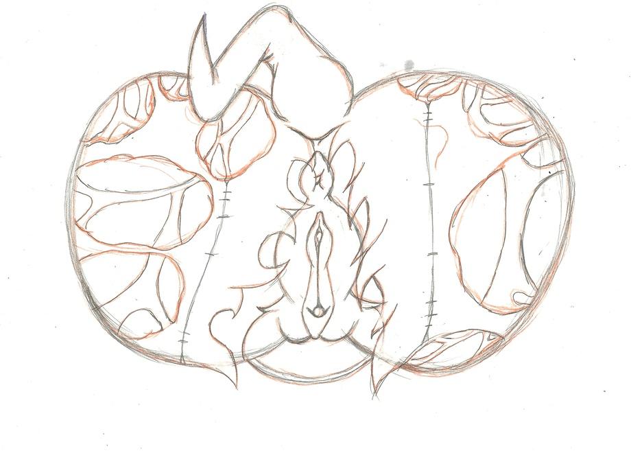 the lien-da echidna Scanty and kneesocks
