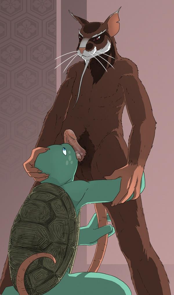 hun turtles teenage mutant ninja Natsu no majo no parade